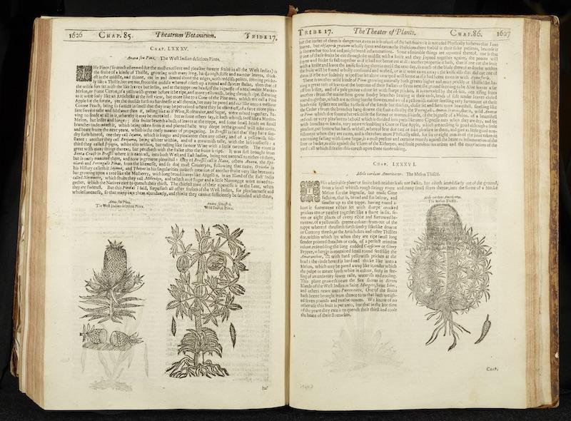 John Parkinson's Theatrum Botanicum