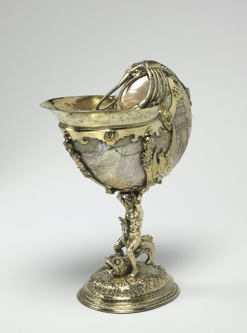 The Nautilus cup